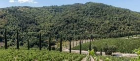 Chianti off-road wine tour in Tuscany