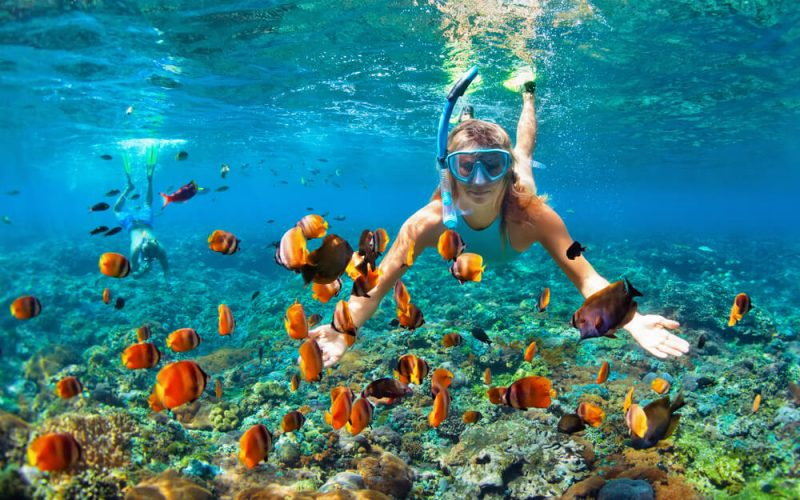 Snorkeling for Beginners